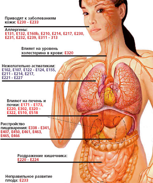 http://i2.imageban.ru/out/2010/04/30/44eae70f4966976deba84e4e4f1de969.jpg