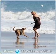 http://i2.imageban.ru/out/2011/06/14/5b948278579fe9f80825ce6b713c8f9a.jpg