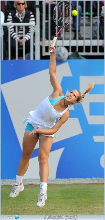 http://i2.imageban.ru/out/2011/07/07/79170a6015885f7767ce440b1d0eee70.jpg
