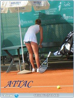 http://i2.imageban.ru/out/2011/08/16/bf1046fee3363d1c8b89d783423a7fe7.jpg