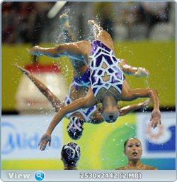 http://i2.imageban.ru/out/2011/08/25/04ae5f4ab6511cb83e0439ef612ea4fa.jpg