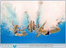 http://i2.imageban.ru/out/2011/08/25/0ce18a2802776042286a29d1ecf91c94.jpg