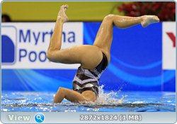 http://i2.imageban.ru/out/2011/08/25/10908176c5d7abf19ab2bc247c7fec56.jpg