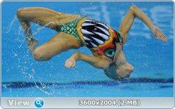 http://i2.imageban.ru/out/2011/08/25/6373c436d430551bab66d99dc797d3bc.jpg