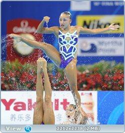 http://i2.imageban.ru/out/2011/08/25/d6d89f6dec82a6bff87d60e50235cf0d.jpg