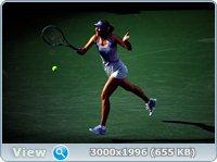 http://i2.imageban.ru/out/2011/08/30/ea1f956e24b35741faa5da2920ff9cf0.jpg