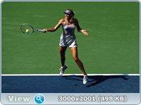 http://i2.imageban.ru/out/2011/09/03/5225199469fd808bdc0382a9a42e3897.jpg