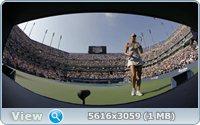 http://i2.imageban.ru/out/2011/09/03/6e4ba9ef5682cff0462c23201a4225f3.jpg