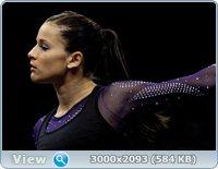http://i2.imageban.ru/out/2011/09/03/a1d7591ae62ed6b137989caf496cfe20.jpg