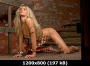 https://i2.imageban.ru/out/2011/09/16/482963926c83c7ef53a905832ef82225.jpg