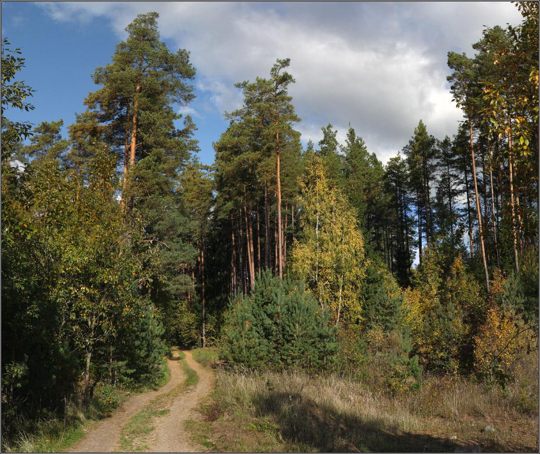 http://i2.imageban.ru/out/2011/10/02/6ae58464b19a090e8b24315d505c0973.jpg
