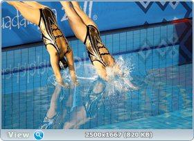 http://i2.imageban.ru/out/2011/11/27/f02600c8b9a5c41c17eff54d50ff9bc2.jpg