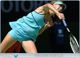 http://i2.imageban.ru/out/2011/12/03/49a59765310577fc7ab0d92033856d5b.jpg