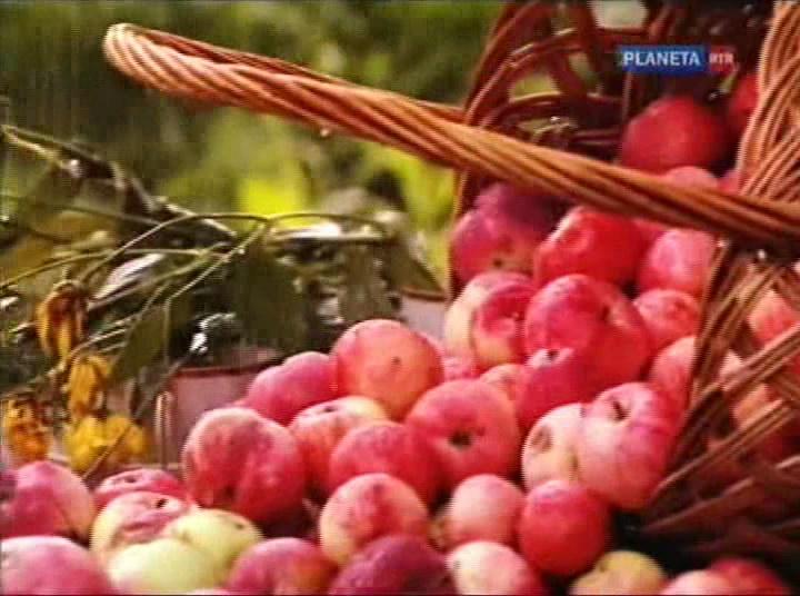 http://i2.imageban.ru/out/2011/12/13/e1b4b69a8d6cff7447bc1e933af100fa.jpg