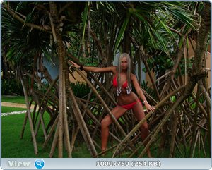 http://i2.imageban.ru/out/2011/12/25/087e39ca5e4030554e8cf622a13f8a53.jpg