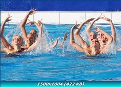 http://i2.imageban.ru/out/2011/12/28/9fd996be9ec5d3cce97c37ed52eb707f.jpg
