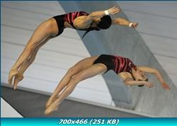 http://i2.imageban.ru/out/2011/12/28/bd52e161330d5fad3eb39147a40bc4b4.jpg