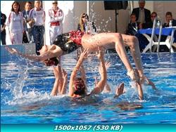 http://i2.imageban.ru/out/2011/12/28/d1a4adde75587b757605530a4af41b12.jpg