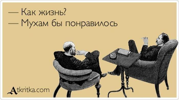 """Прикольные """"аткрытки"""""""