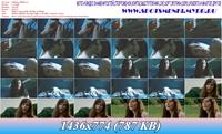 http://i2.imageban.ru/out/2012/07/31/5ba0bd9d82803aea6fcd77717c213d13.jpg