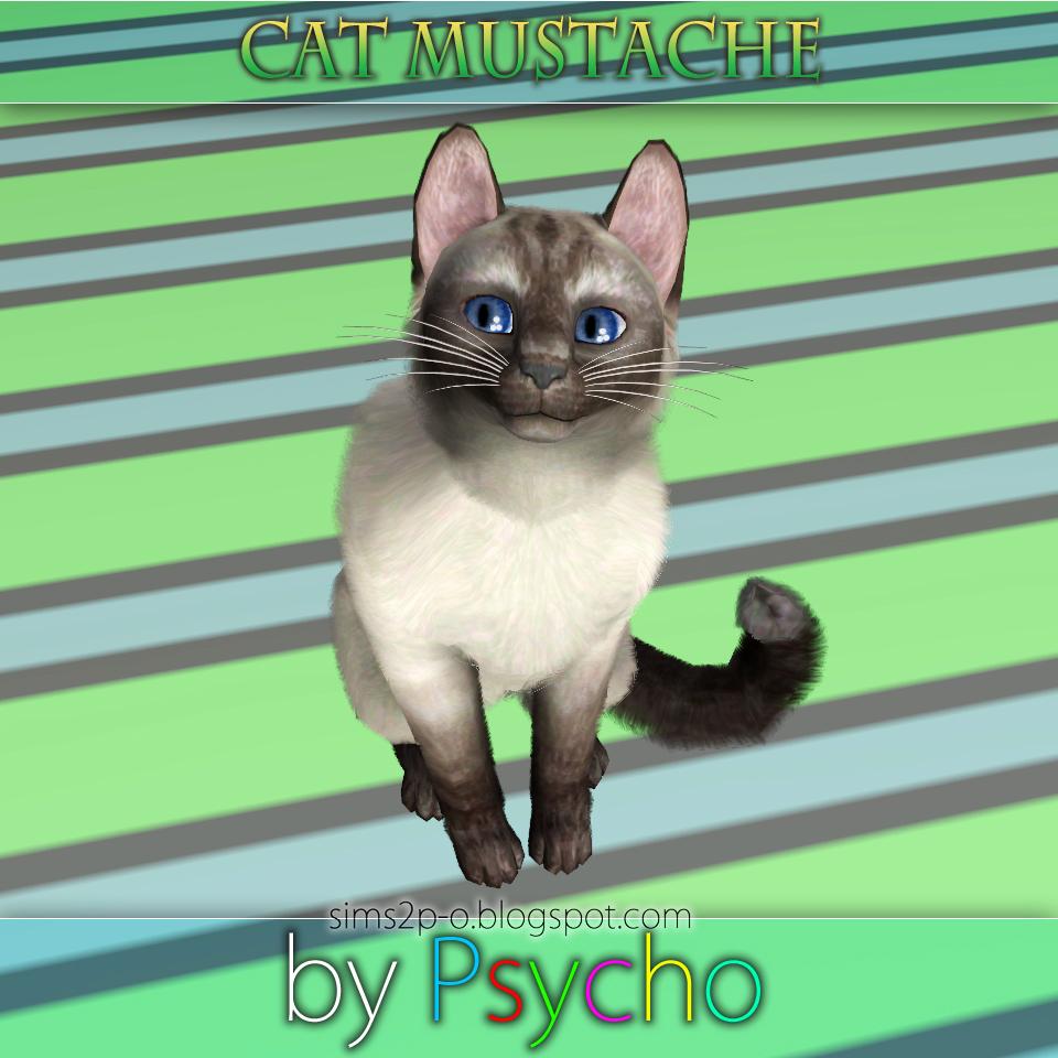 Кошачьи усы от Psycho