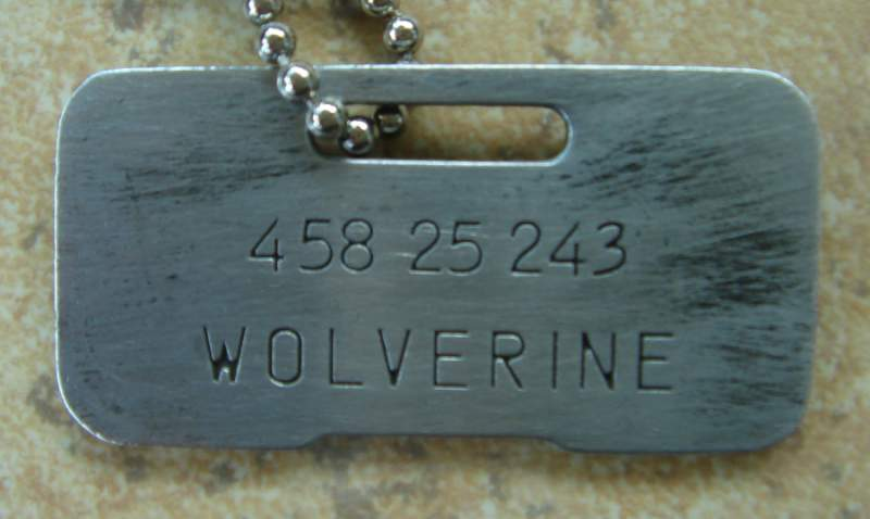 12537-weathered-wolverine.jpg