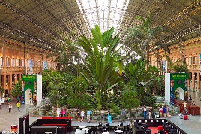 Ботанический сад на вокзале в Мадриде