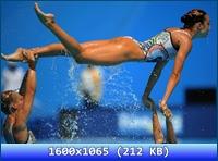 http://i2.imageban.ru/out/2012/10/06/fe86bff8bc204c4e66d278ddd6b66306.jpg