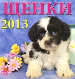 Календари на 2013 год: Год Змеи, Русь Православная, Забавные котята, Щенки, Настоящие друзья