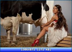 http://i2.imageban.ru/out/2012/11/07/cc810ad8775fba198d32cc9ef040716d.jpg