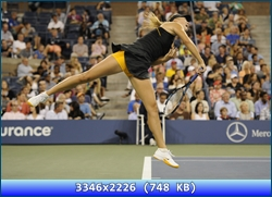 http://i2.imageban.ru/out/2012/11/19/0eb3f3b82986cad52184f9f099639281.jpg