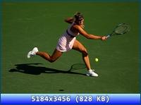 http://i2.imageban.ru/out/2012/11/20/21d1c7d30d57d9d1a64cca1cd6b98a85.jpg