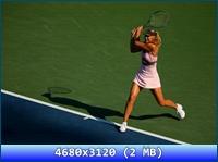 http://i2.imageban.ru/out/2012/11/20/af46cca1fe7b48a674e20baf6c73089d.jpg