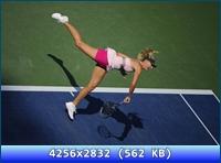 http://i2.imageban.ru/out/2012/11/20/bf911e04f0b35e1d0f4e4aa913f15468.jpg