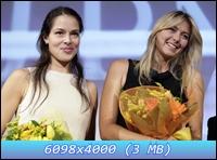 http://i2.imageban.ru/out/2012/12/07/ad0a1375bb84a33de1819bd6628e23d4.jpg