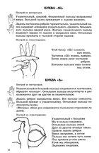 Конфетка: Пальцы развиваем, буквы расставляем