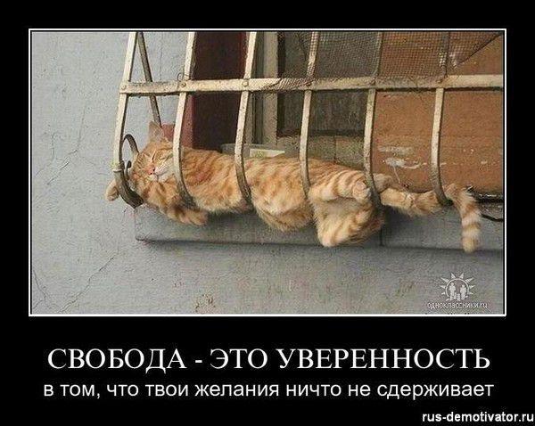1302412854_svoboda-eto-uverinost.jpg