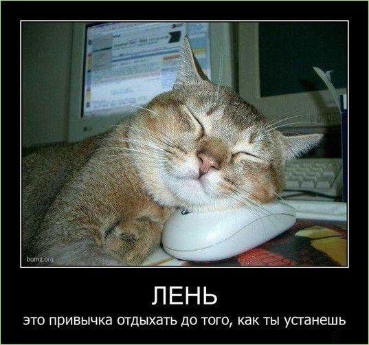 ћ¬®а_kartinki-339-3.jpg