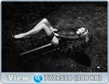 http://i2.imageban.ru/out/2013/04/30/7723bd01c70adefdd4d9440535e08bfa.jpg