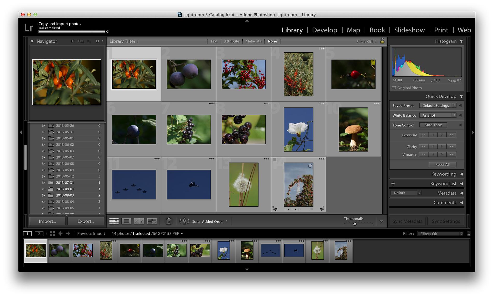 Lightroom templates free download