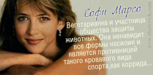 http://i2.imageban.ru/out/2013/10/10/472664caffaf20b7a165a43d56ae70ac.jpg