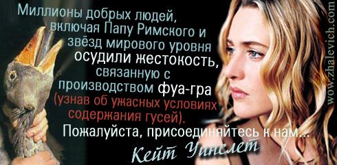 http://i2.imageban.ru/out/2013/10/10/6205a23025c8f78748fea3dc6a304776.jpg