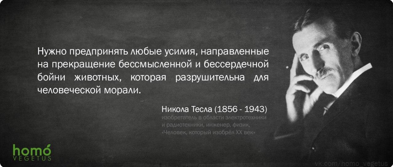 Никола Тесла_1.jpg