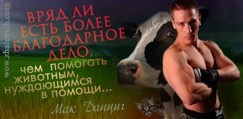https://i2.imageban.ru/out/2013/10/11/81058b71a052db91abec0ba72b5c61af.jpg