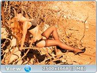 http://i2.imageban.ru/out/2013/10/16/175f3302ee88b0a7ab0c878b707c0f2c.jpg