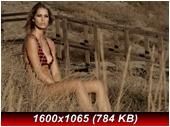 http://i2.imageban.ru/out/2013/10/30/cf541d96bf3bd2d4d649d4e59dc4ffa8.jpg