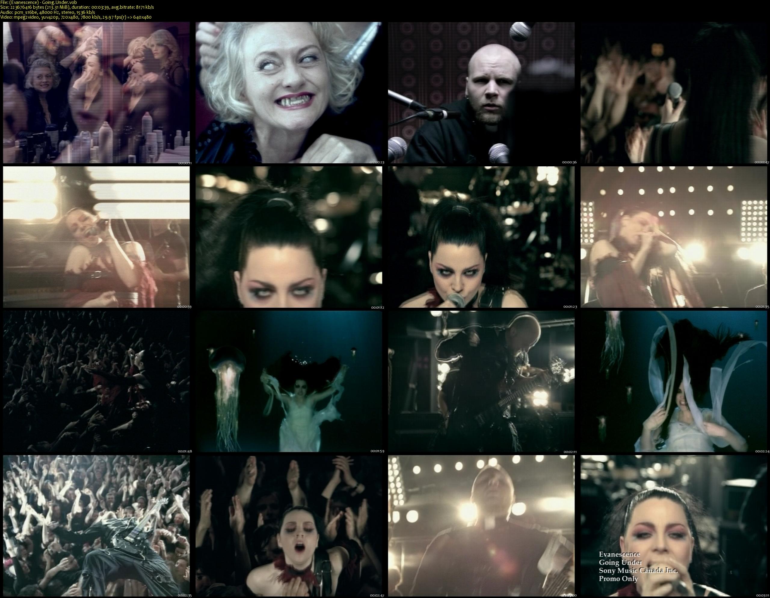 (Evanescence) - Going.Under_s.jpg