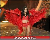 http://i2.imageban.ru/out/2013/11/15/a03174e09819fe2f96e849c0db544066.jpg