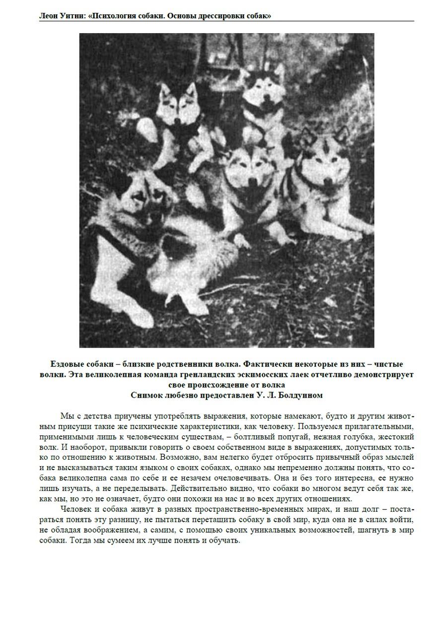 http://i2.imageban.ru/out/2013/12/05/5ec55c55e20a1f354f5d785df937803b.jpg