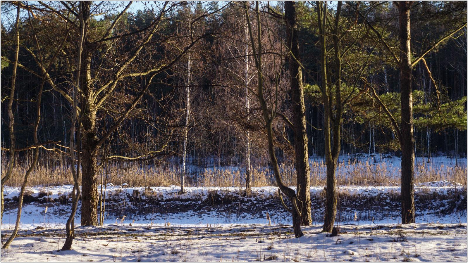 http://i2.imageban.ru/out/2013/12/15/0eed2e656def7d9ab71e32fbeb6ff938.jpg